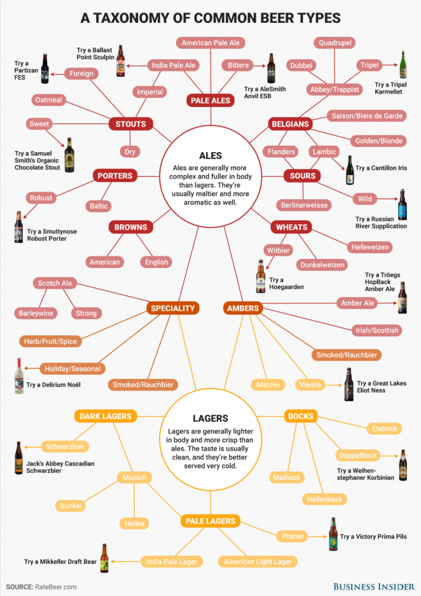 bi-graphicsbeer-taxonomy